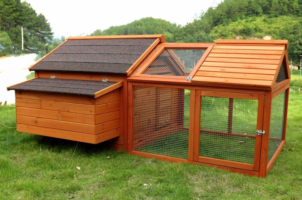 le grillage meilleure solution pour lever des poules en toute s curit. Black Bedroom Furniture Sets. Home Design Ideas
